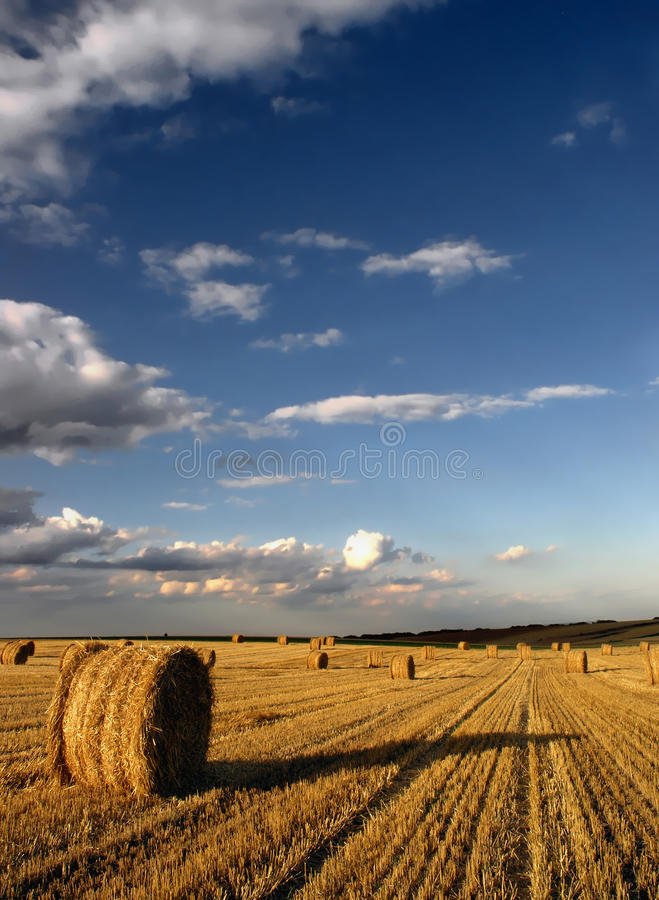 Download Hay Bales stock photo. Image of cloud, white, landscape - 22807582