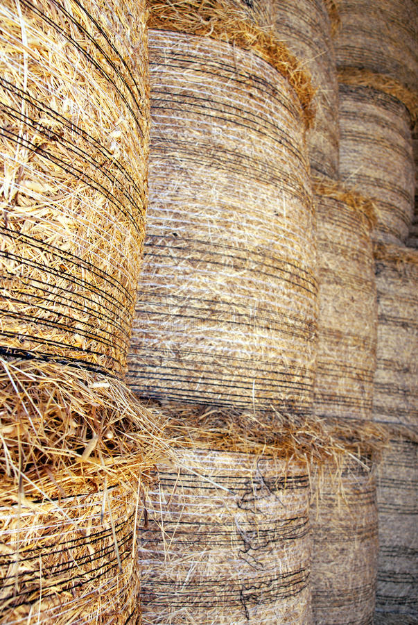 Hay bales royalty free stock photography