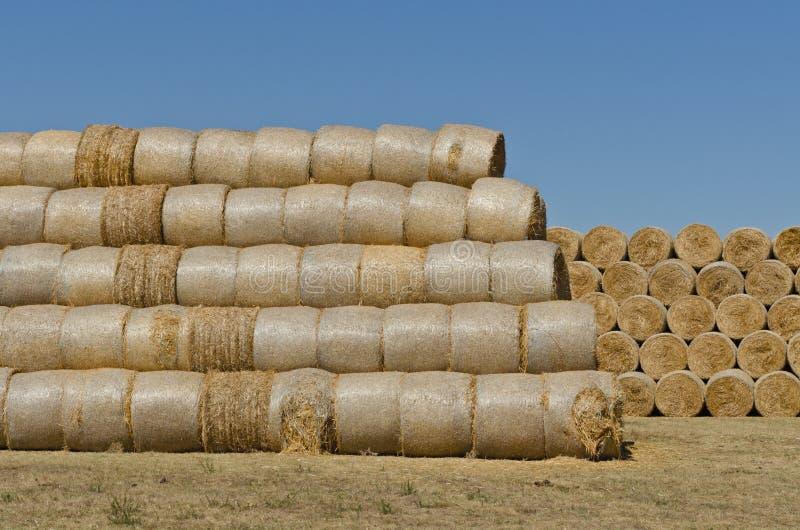 Download Hay bales stock image. Image of barley, scene, nobody - 26390151