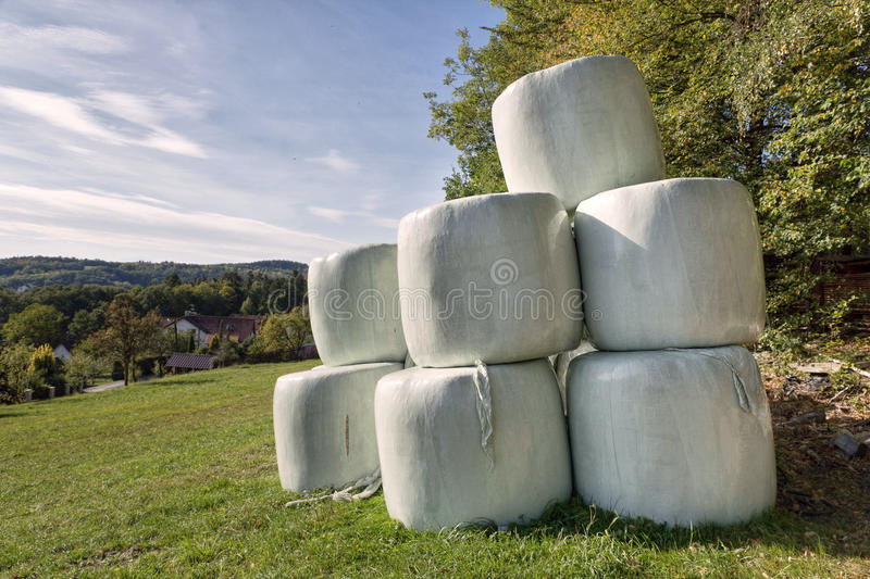 Download The hay bales stock photo. Image of fermentation, packages - 26837436