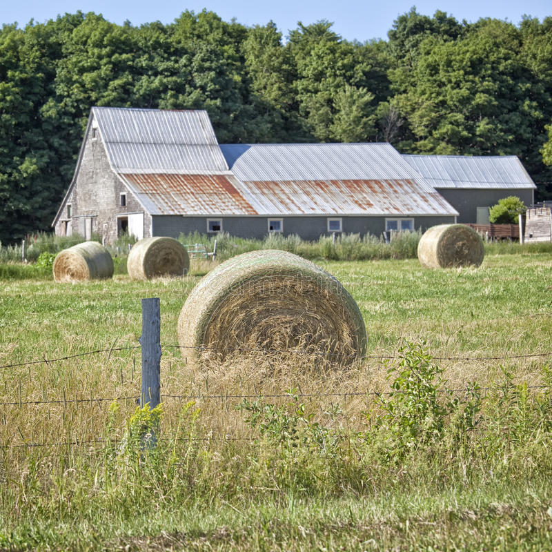 Free Hay Bales Royalty Free Stock Photos - 28593428