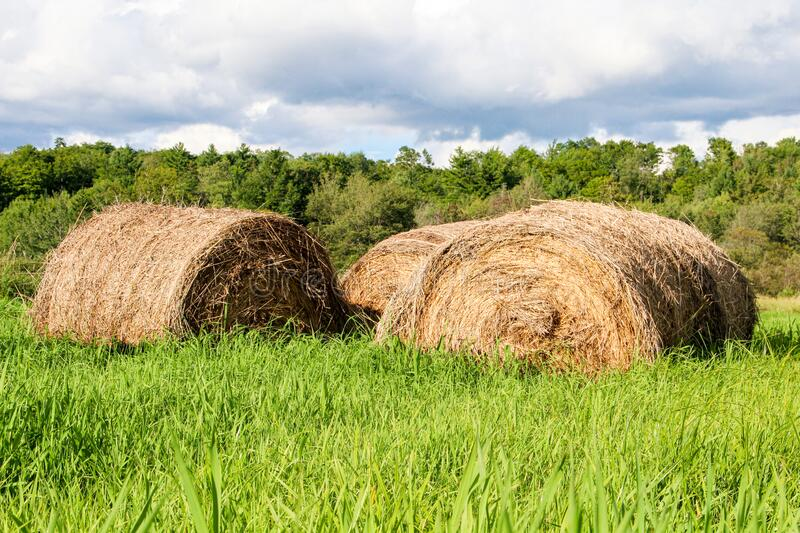 Hay Bales Against a Cloudy Sky stock image