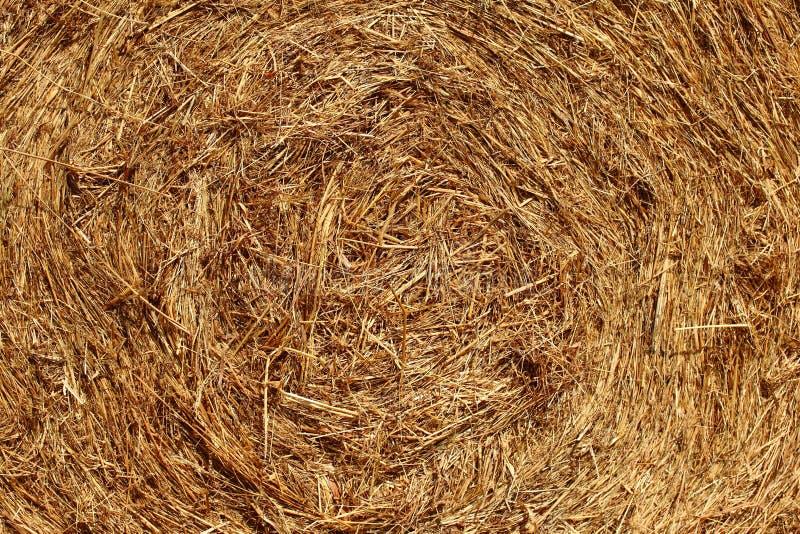 Hay Bales. Close up of hay bale royalty free stock photos