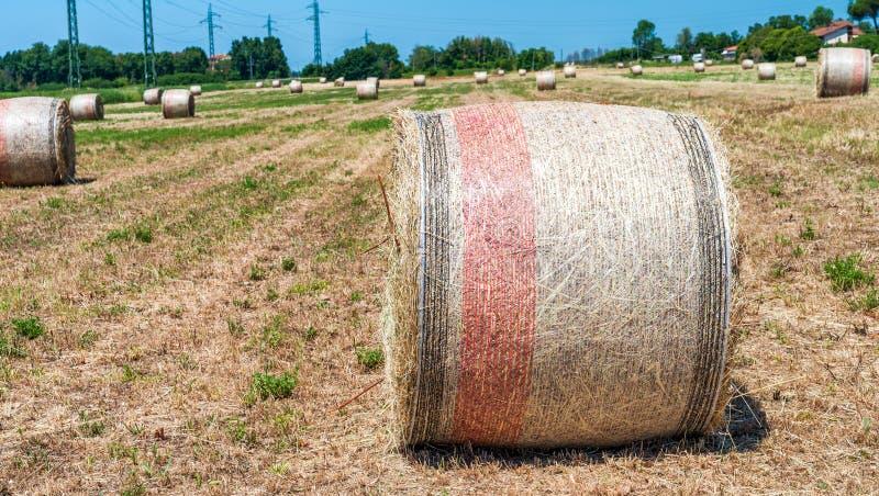 Hay Bales in de lente - Toscanië, Italië royalty-vrije stock foto's