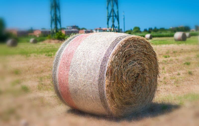 Hay Bales en la primavera - Toscana, Italia imagen de archivo libre de regalías
