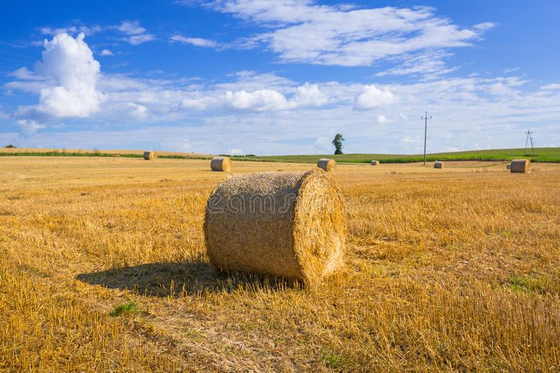 Hay bales on the field. After harvest in Poland royalty free stock photos