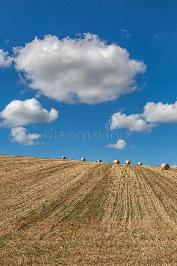 Hay Bales in a Field. Hay bales in the Sussex countryside on a sunny late summers day stock image
