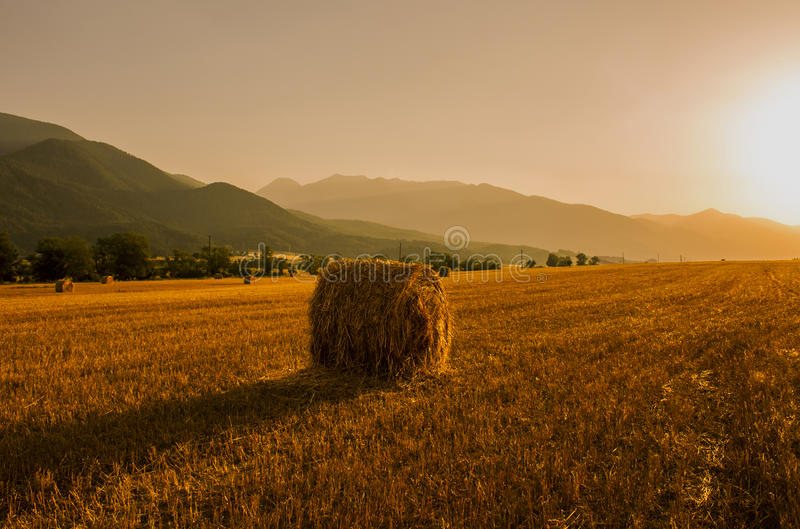 Hay bales field at sunset stock image