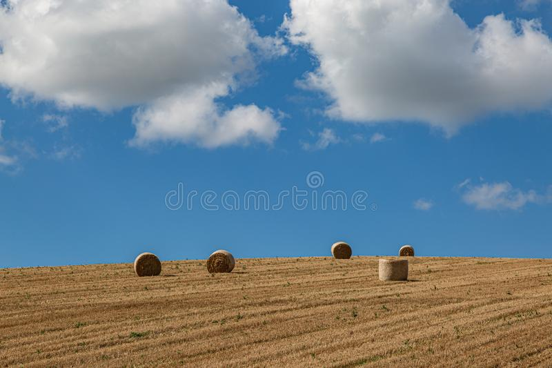 Hay Bales in a Field. Hay bales in the Sussex countryside on a sunny late summers day royalty free stock images