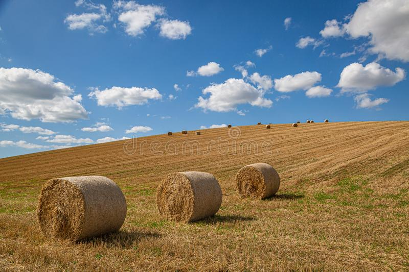 Hay Bales in a Field. Hay bales in the Sussex countryside on a sunny late summers day royalty free stock photos