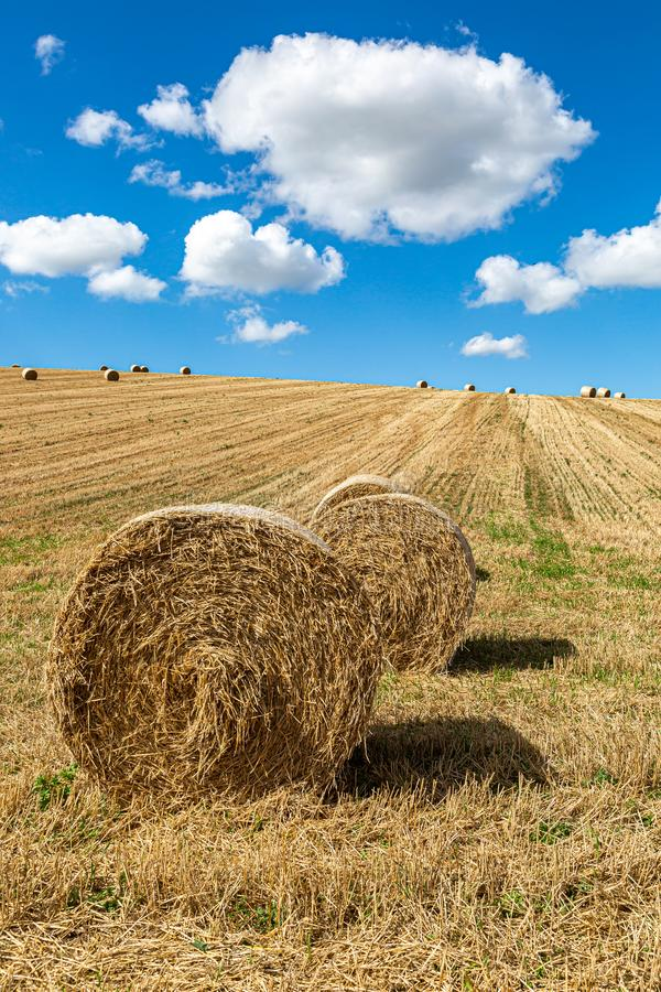 Hay Bales in a Field. Hay bales in the Sussex countryside on a sunny late summers day stock images