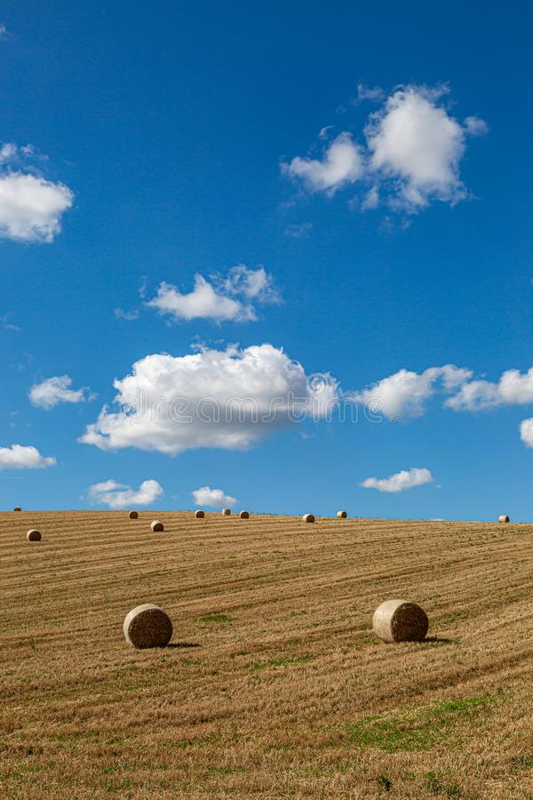 Hay Bales in a Field. Hay bales in the Sussex countryside on a sunny late summers day stock photography