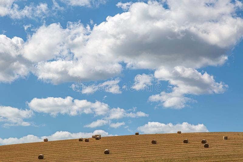 Hay Bales in a Field in Sussex. Hay bales in the Sussex countryside on a sunny late summers day stock images