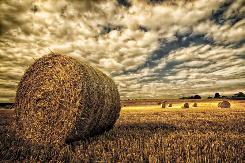 Hay Bales In Field Under en ilsken himmel arkivfoto