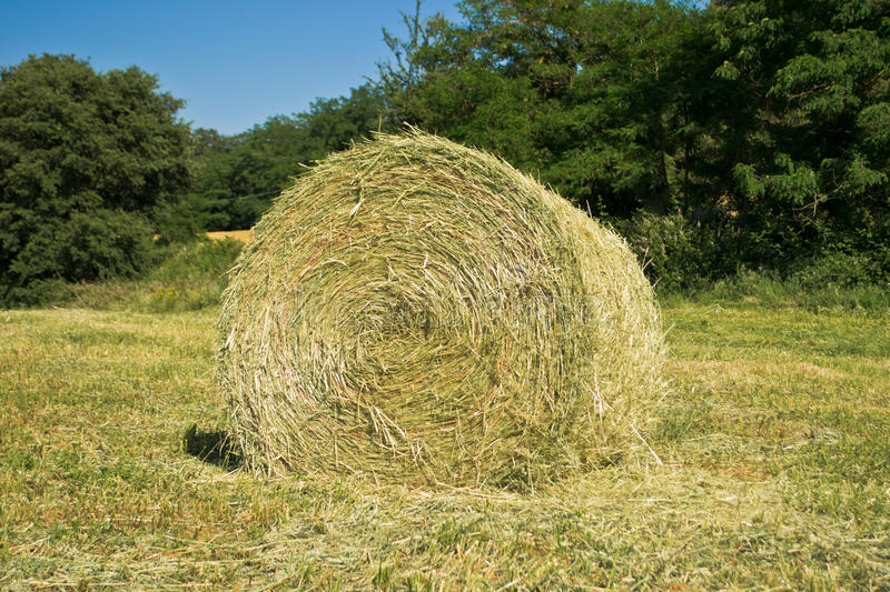 Hay bales in a green field royalty free stock photography