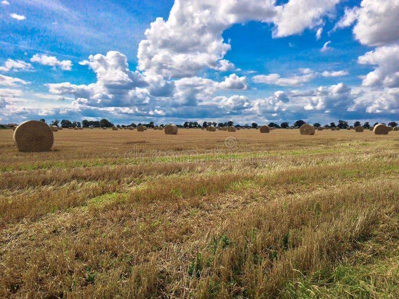 Hay Bales Landscape images libres de droits