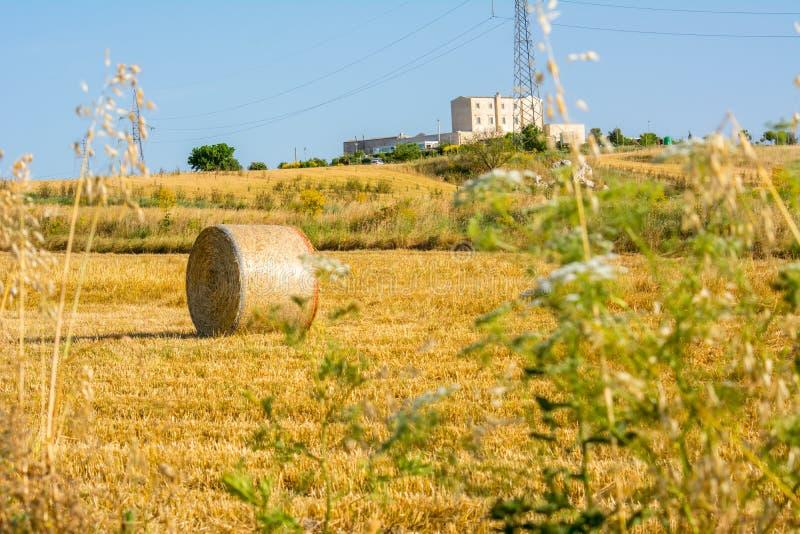 Hay Bales NINGÚN OGM en el campo cerca de Roma en fondo claro del cielo de Bly en julio Italia imágenes de archivo libres de regalías