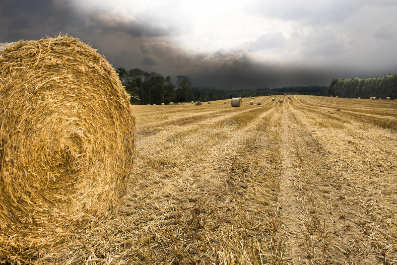 Hay bale ready, rain comes. Hay bale stapled, rain clouds come royalty free stock image