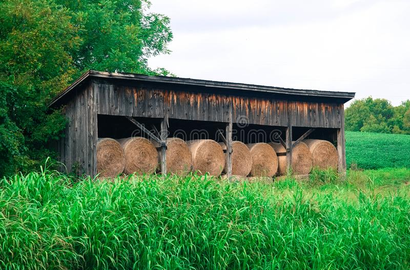 Hay bales stacked in a barn at the edge of a green field stock images