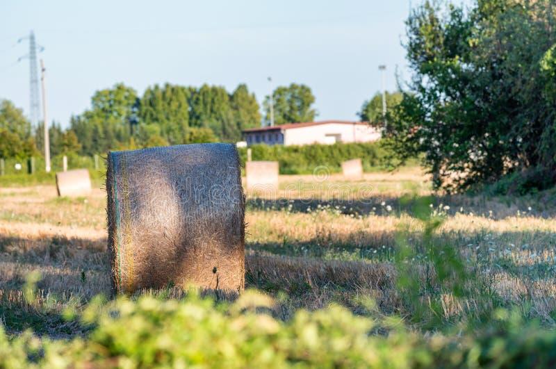 Hay Bales, Toscana - Italia fotografía de archivo