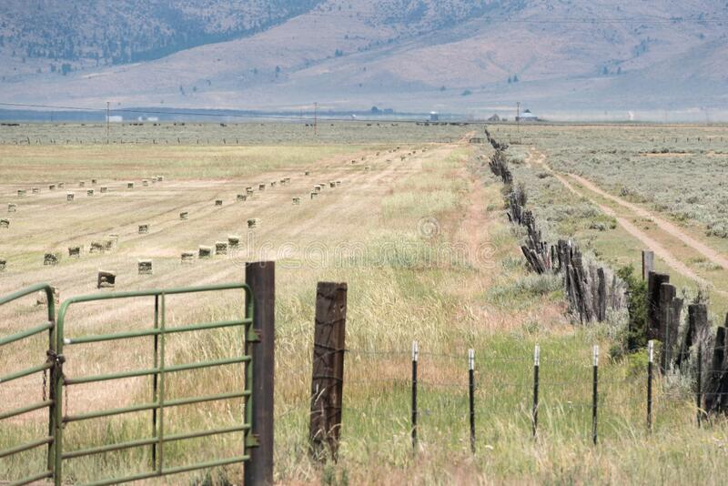 Hay bales and wooden fence line, Northern California ranch royalty free stock images