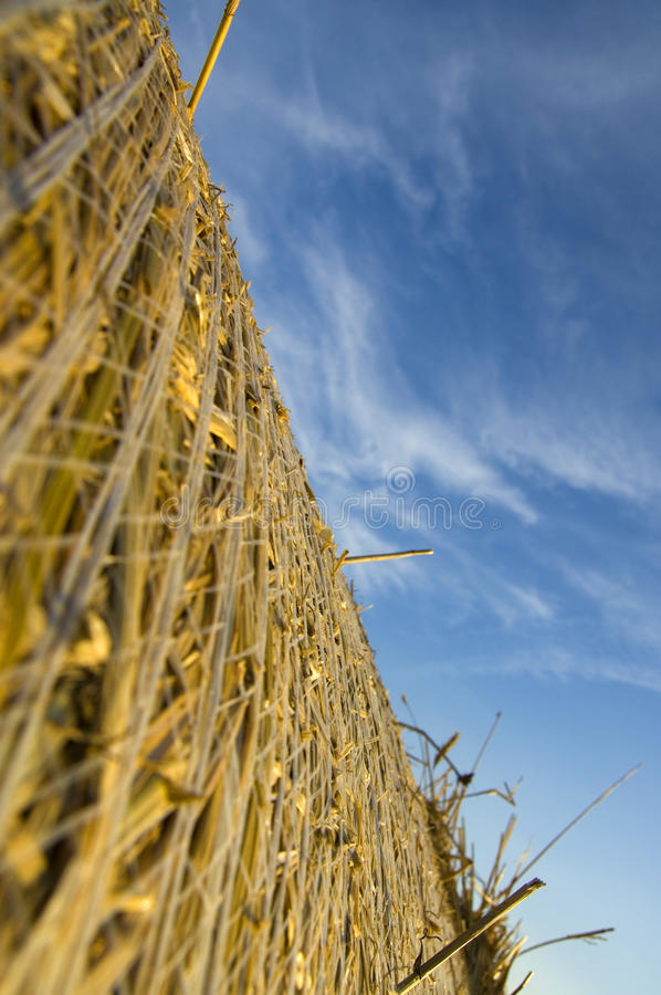 Hay ball from worms view royalty free stock photos