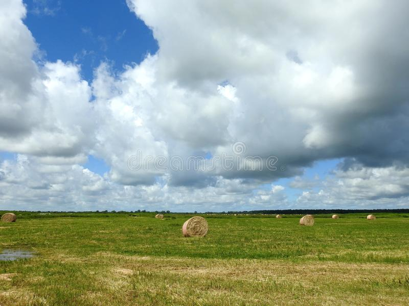 Hay balls, field and cloudy sky, Lithuania royalty free stock photo