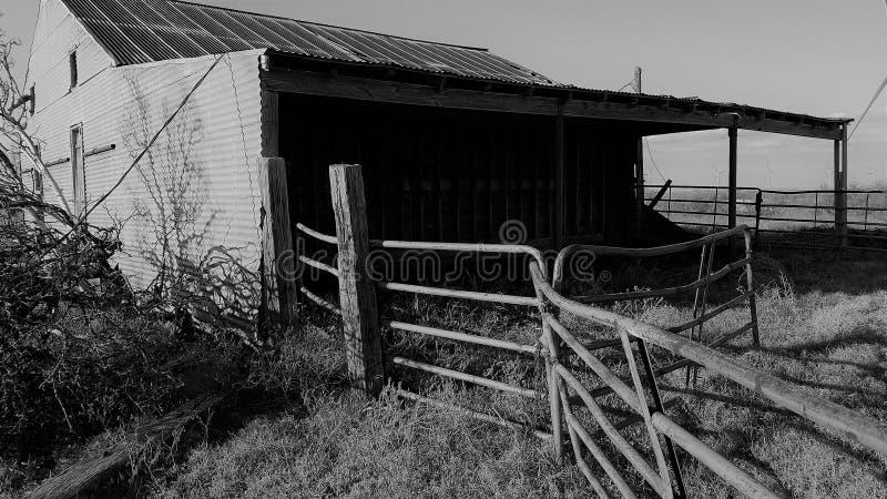 Hay Barn blanco y negro en Tejas del norte fotografía de archivo libre de regalías