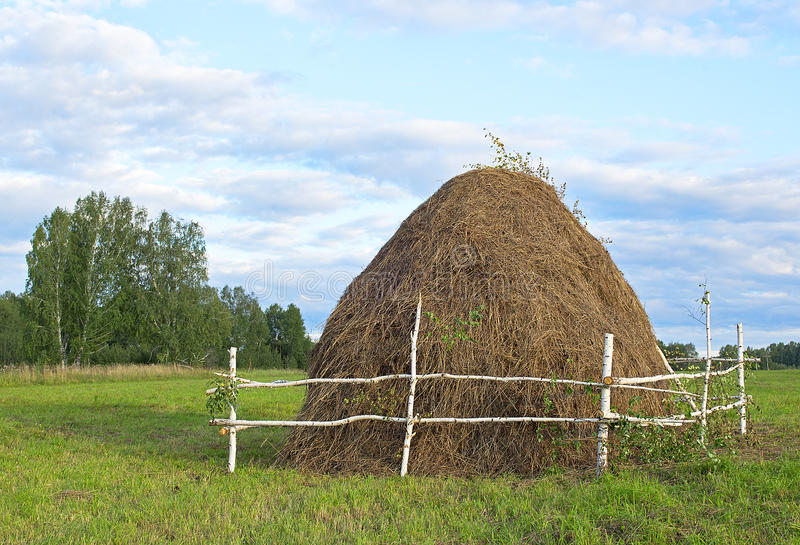 Hay. Big haystack on a field royalty free stock images
