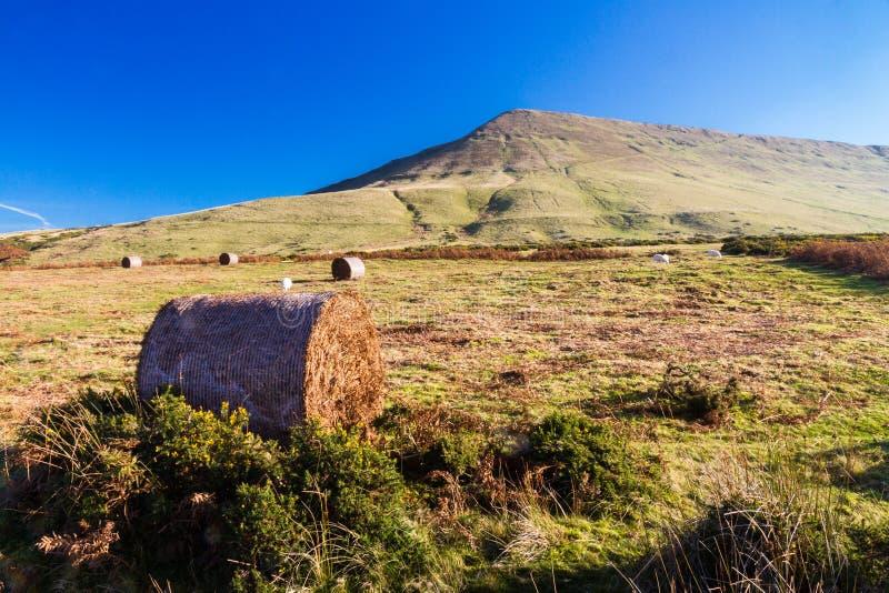 Hay Bluff, Penybegwn, punto di riferimento in Galles fotografia stock