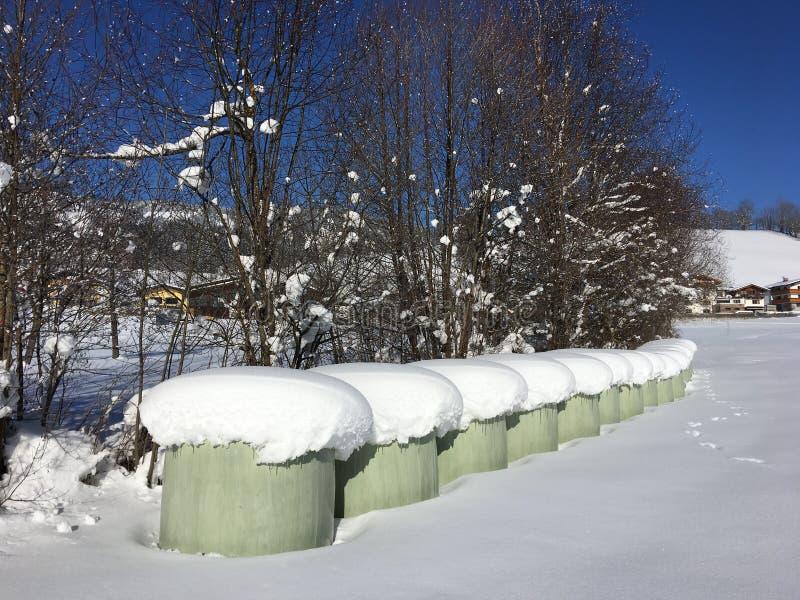 Hay Bundles innevato, Goldegg, Austria fotografia stock libera da diritti