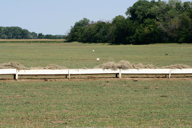 Hay crib at cattle feeding operation. Hay crib stocked and ready for evening cattle feeding at a feedlot operation with mineral blocks and salt licks in stock photography