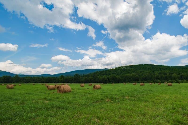 Hay Field mit großem Himmel lizenzfreie stockfotografie