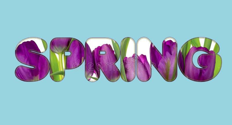 Hay flores en el texto de la PRIMAVERA ilustración del vector