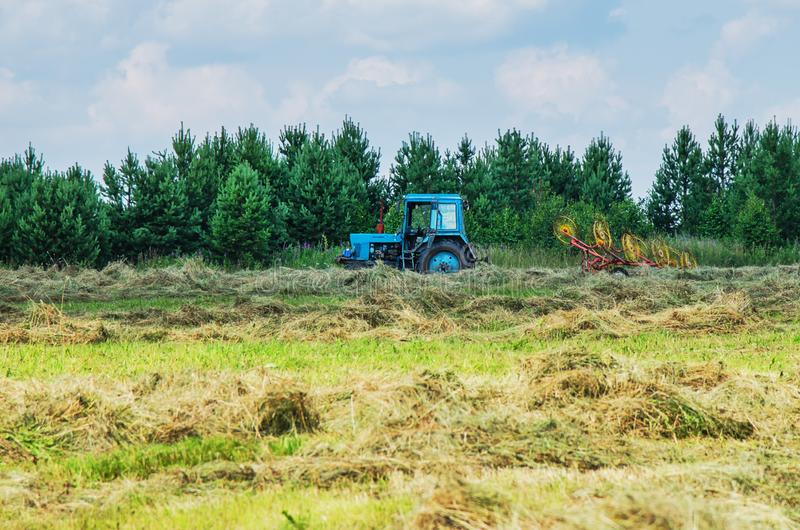 Hay harvesting with the help of special equipment. Tractor equipped with mechanized rake during hay harvesting stock image