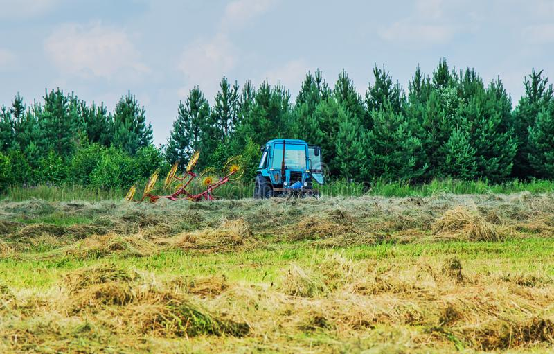 Hay harvesting with the help of special equipment. Tractor equipped with mechanized rake during hay harvesting stock photography