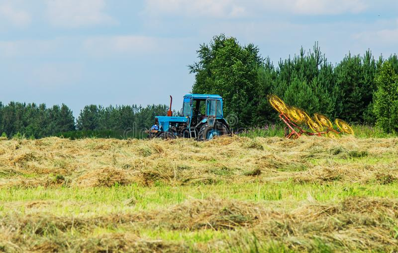 Hay harvesting with the help of special equipment. Tractor equipped with mechanized rake during hay harvesting stock photo