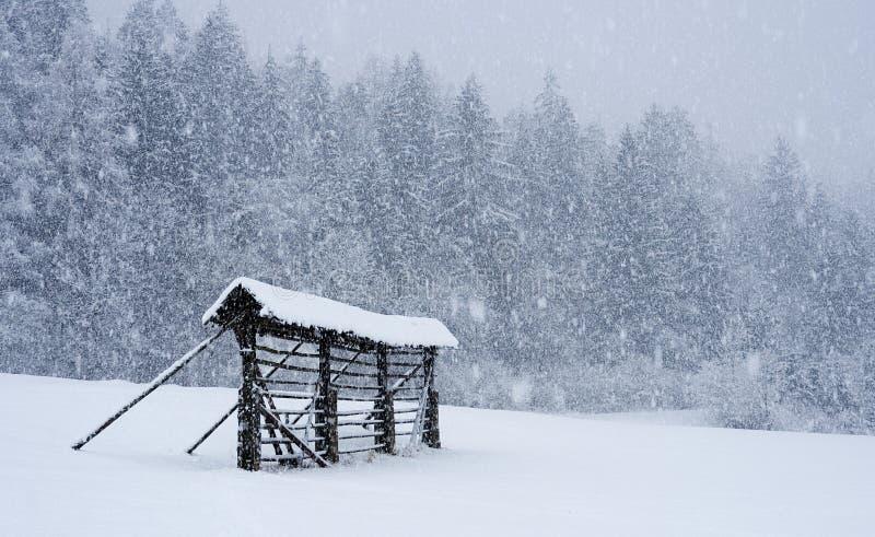 Hay rack in snow storm royalty free stock photos