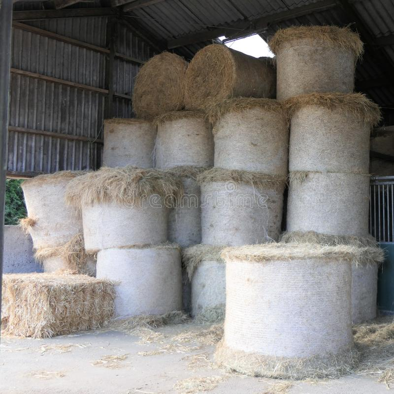 Hay roll bales piled up royalty free stock images