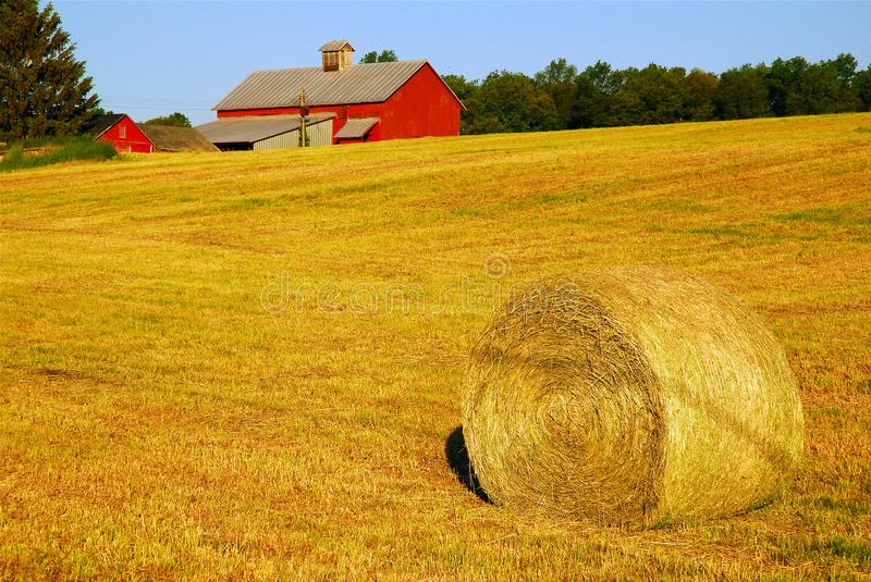 Hay roll and barn royalty free stock photography