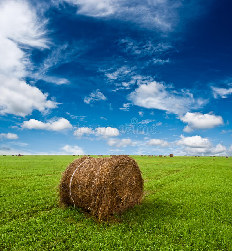 Hay roll on green grass royalty free stock photos