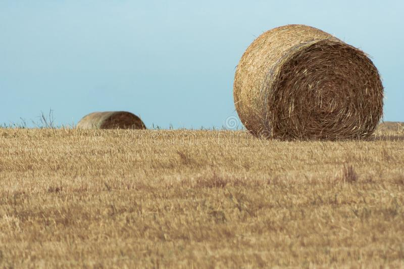 Hay roll on the top of a hill. On a sunny summers day stock images