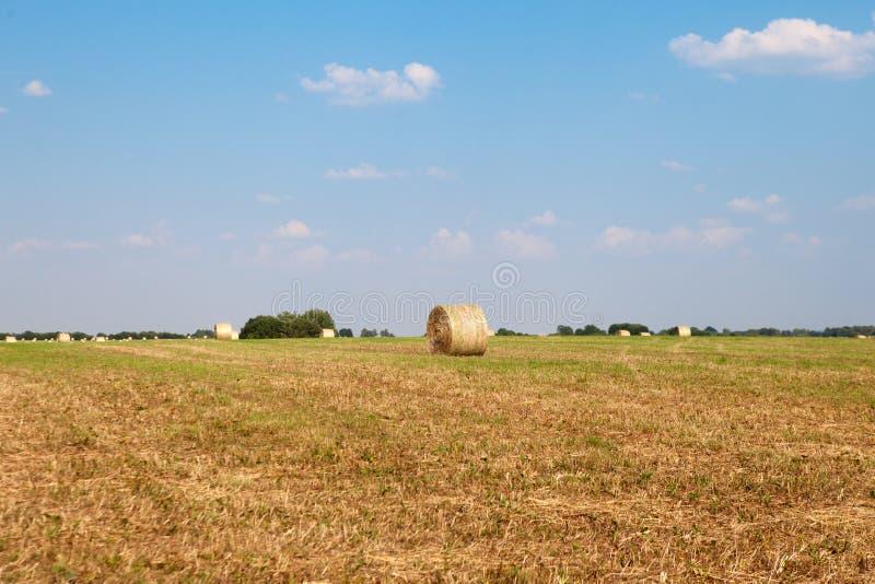 Hay Roll On una granja fotografía de archivo
