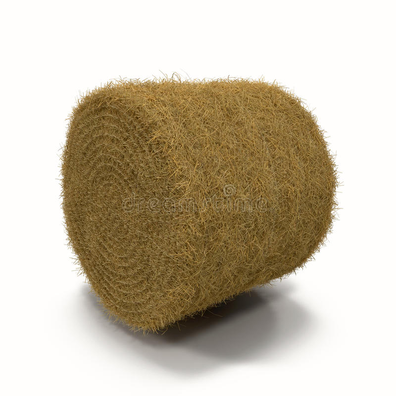 Hay Roll on White Background royalty free stock photo