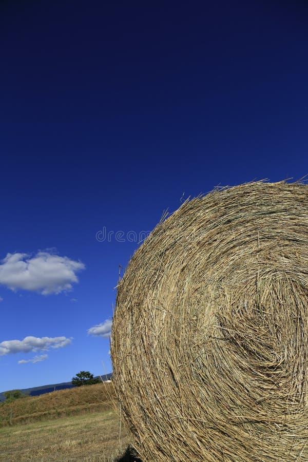 Hay Rolls royalty-vrije stock afbeelding