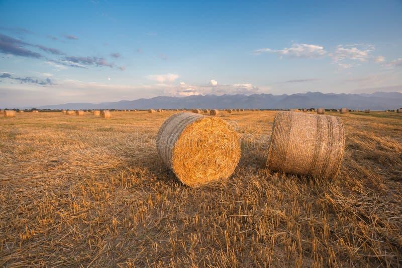Hay Rolls emballé au coucher du soleil photos libres de droits