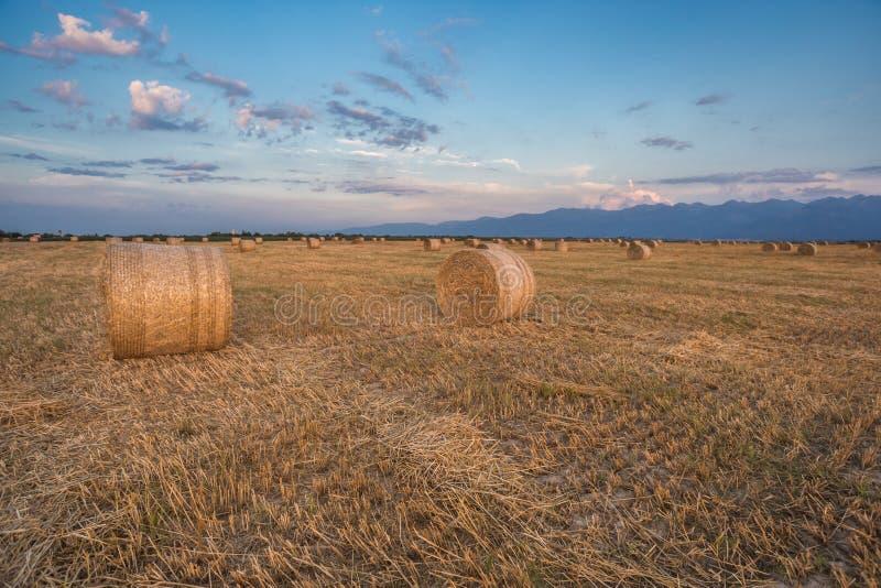 Hay Rolls emballé au coucher du soleil photographie stock libre de droits