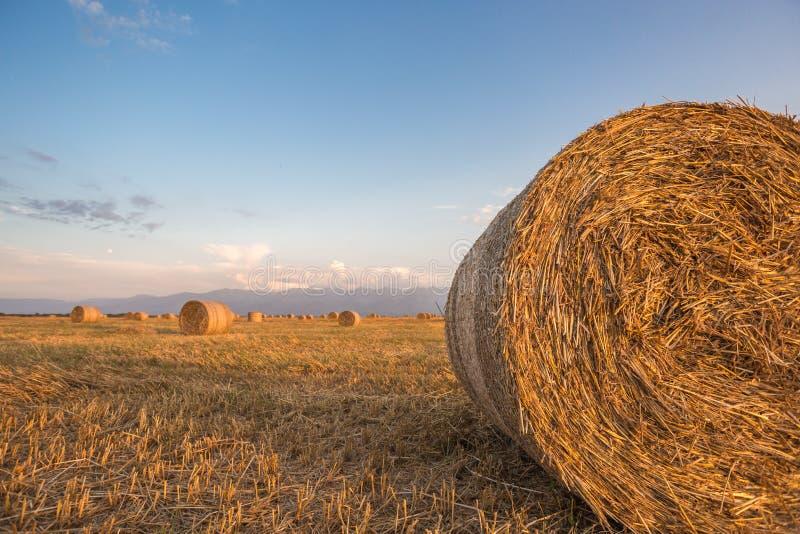 Hay Rolls emballé au coucher du soleil images libres de droits