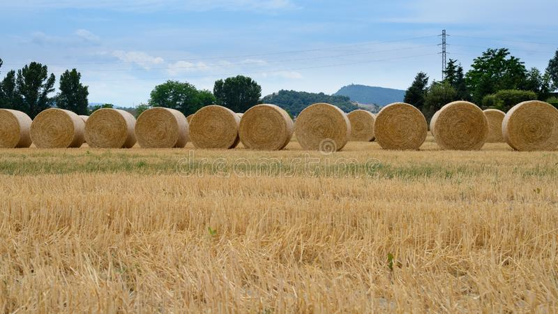 Hay round bales in field on a hot summer day , Catalonia village. Hay round bales in field on a hot summer day against the blue sky, Catalonia village royalty free stock image