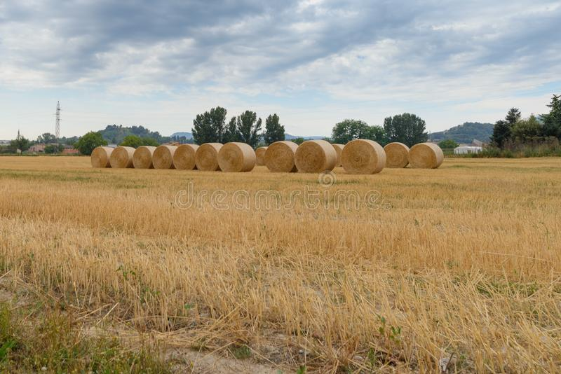Hay round bales in field on a hot summer day against the blue sky, Catalonia village stock photo